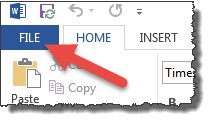 "In Microsoft Word select ""File"" in the upper left hand corner."
